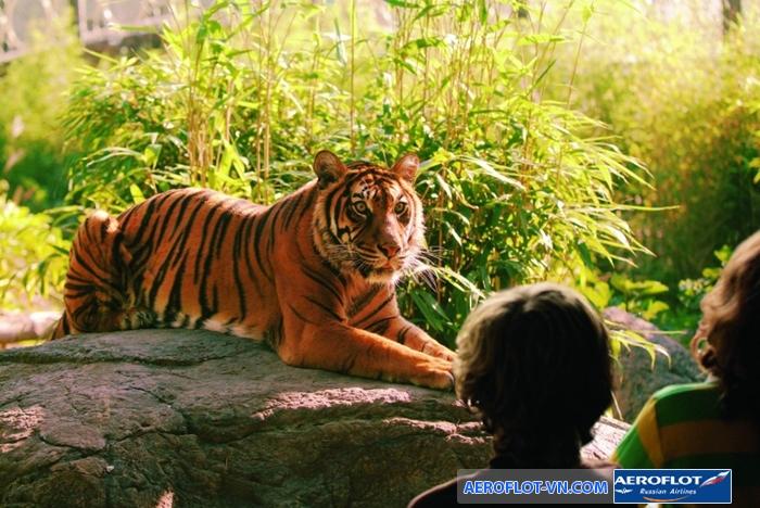 Vườn thú Blijdorp