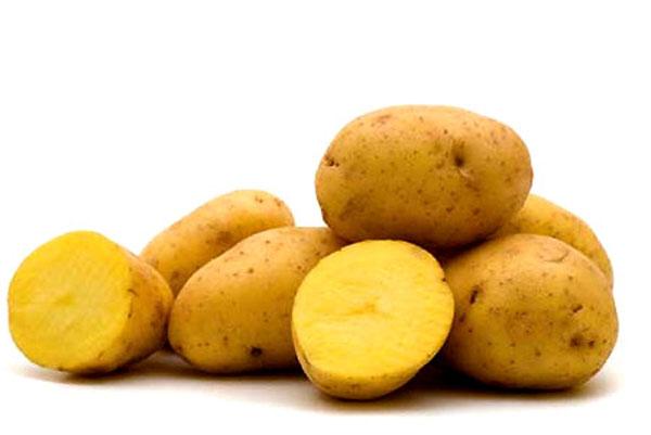 Món ăn truyền thống nga là khoai tây