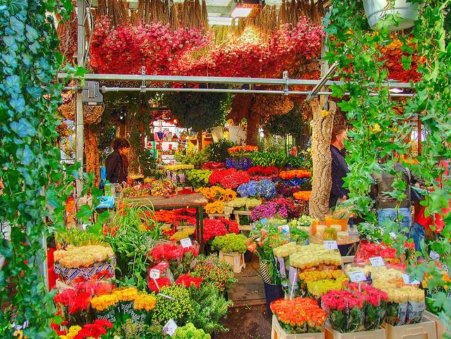 Chợ hoa Bloemenmarkt nổi tiếng ở Hà Lan