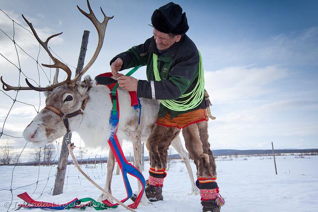 Tới Thụy Điển trải nghiệm văn hóa bản địa Sami