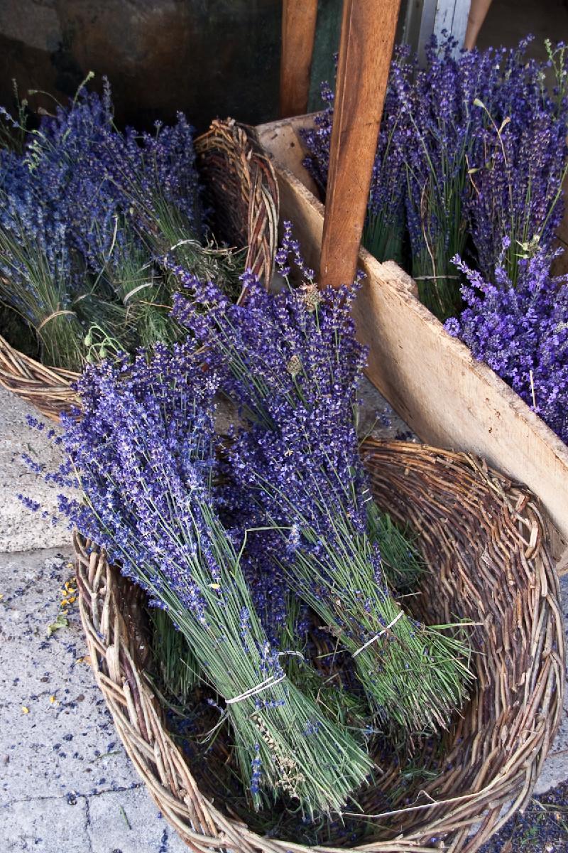 Basket of Lavender, Provence