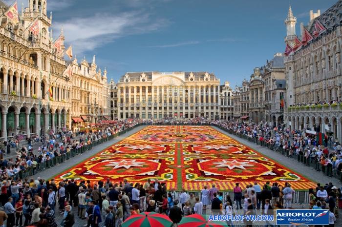 Thảm hoa rực rỡ ở Grand - Place